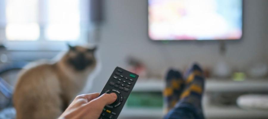 Control de tus finanzas con el estado de cuenta cablevisión